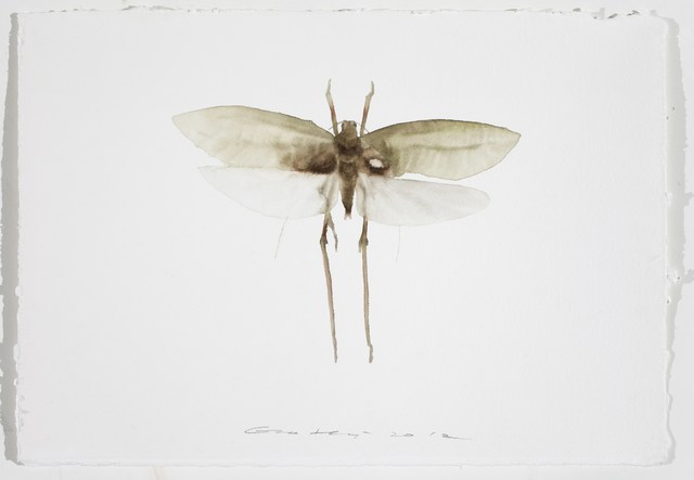 , 'Painting is Collecting - Insect #7,' 2012, Leo Xu Projects
