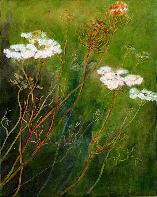, 'Queen Anne's Lace,' , Adah Rose Gallery
