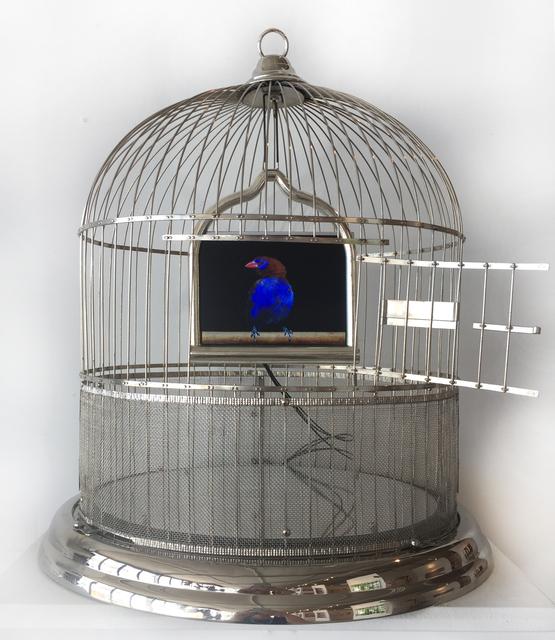 , 'Reflections,' 2017, Bernice Steinbaum Gallery