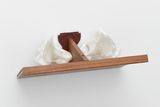 , 'ILIAQUES,' 2015, Galerie Bertrand Grimont