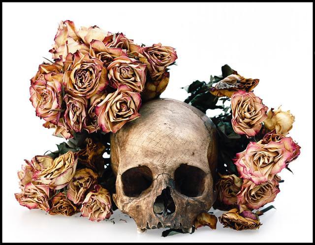 David Bailey, 'Skull with Pink Flowers', 2008, Photography, Lambda print, Galería Hilario Galguera