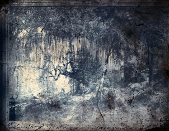 , 'Forest in Rain,' 2013, Galerie Anhava