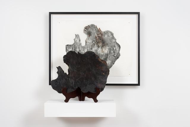 , 'Doppelgänger, Lake Pedder,' 2018, Roslyn Oxley9 Gallery
