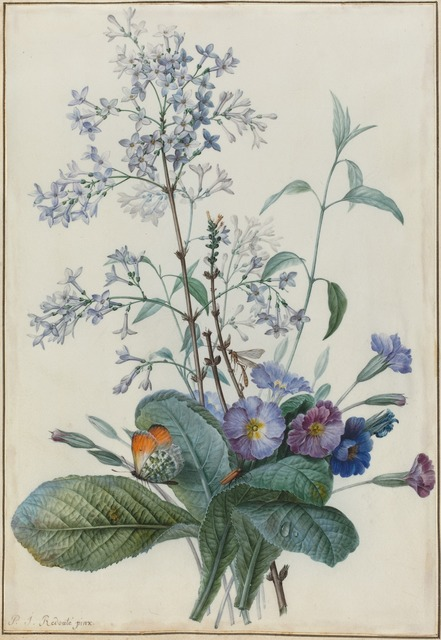 Pierre Joseph Redouté, 'A Bouquet of Flowers with Insects', National Gallery of Art, Washington, D.C.