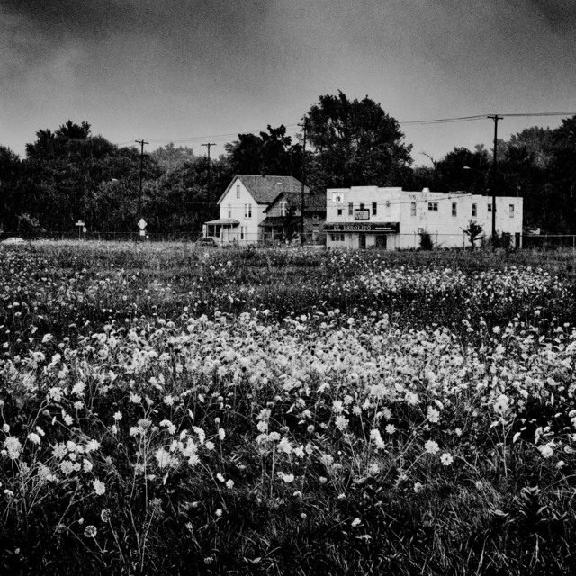 , 'Saginaw, Michigan, USA, 2015,' 2015, Magnum Photos