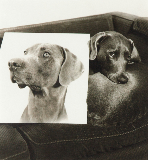 William Wegman, 'Double Portrait (From Many Ray:  A Portfolio of 10 Photographs)', 1982, Heather James Fine Art