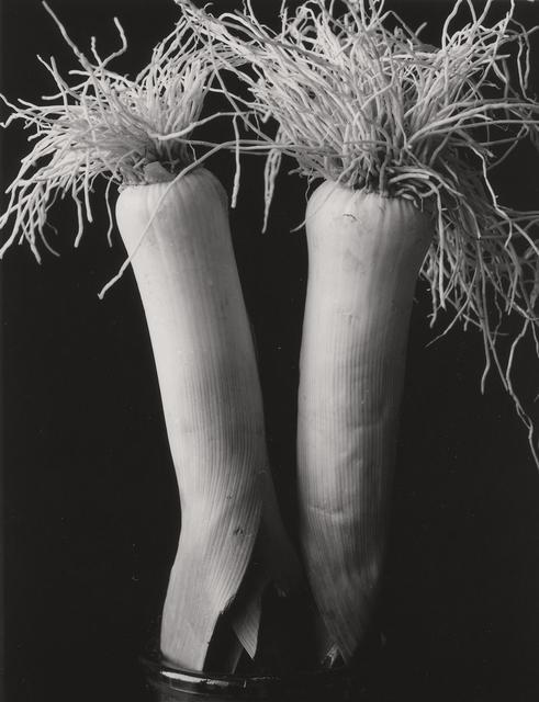 , 'Two Leeks,' 2005, John Davis Gallery