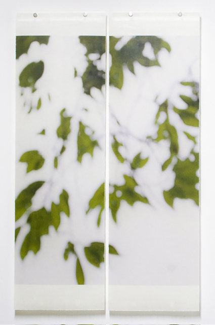 Jeri Eisenberg, 'Summer Greens No. 9, 2008', 2008, Carrie Haddad Gallery