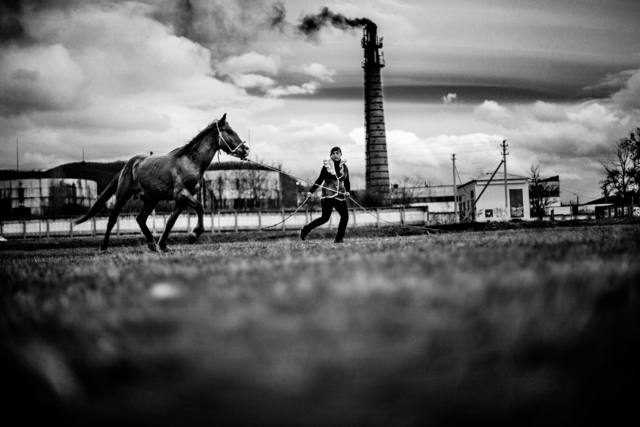 , 'A ukranian woman tames a horse near Perevalnoe Ukranian Army base in  Perevalnoe, Crimea,' 2014, Raffaella De Chirico