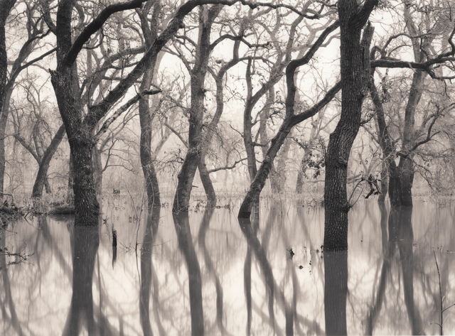 , 'Water Dance,' 2016, The Ansel Adams Gallery