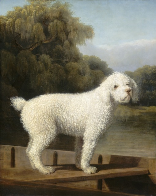 George Stubbs, 'White Poodle in a Punt', ca. 1780, National Gallery of Art, Washington, D.C.