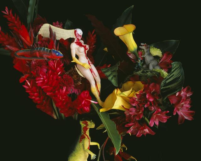 , 'qARADISE,' 2014, Foam Fotografiemuseum Amsterdam
