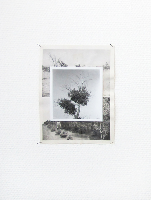 , 'Reforestation 01,' 2014, SEA Foundation