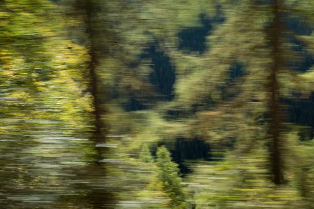 , '18.10.2013 - 14:20:46,' 2013, ammann//gallery