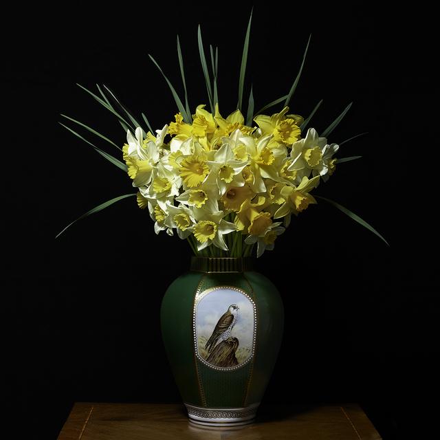 T.M. Glass, 'Narcissus in a Green Falcon Vessel', 2018, Print, Impression d'archive avec pigments / Archival Pigment Print, Galerie de Bellefeuille