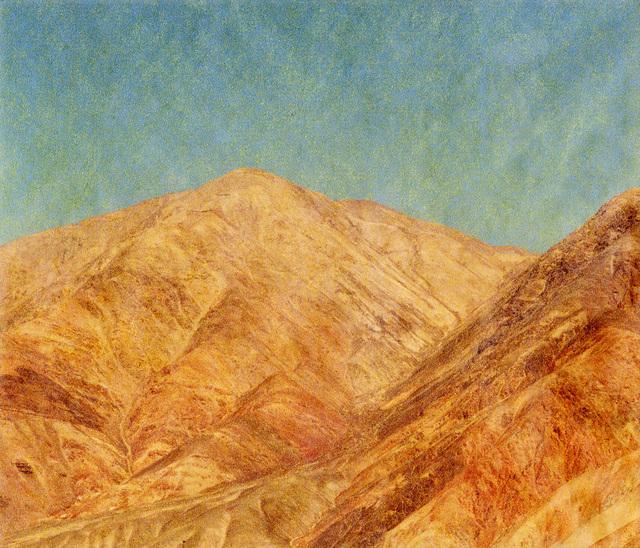 Lisa Barnard, 'Santa Filomena, Andes, Peru', 2016, Flowers