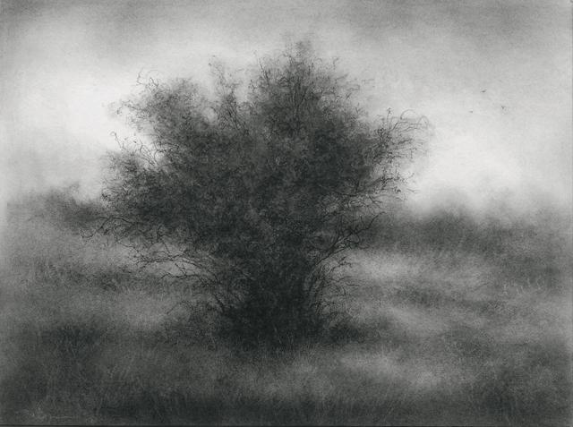 Sue Bryan, 'Little Creature in a Field', 2017, Carrie Haddad Gallery