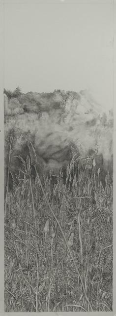 , 'Diana's Field 4,' 2018, Resource Art