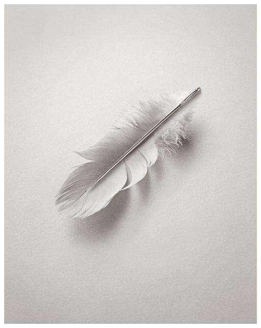 Chema Madoz, 'Untitled', 2015, Photography, Gelatin silver print, Galerie Clara Maria Sels