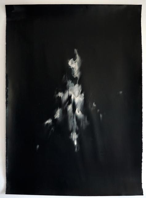 , 'Undying series II,' 2018, Mariane Ibrahim Gallery