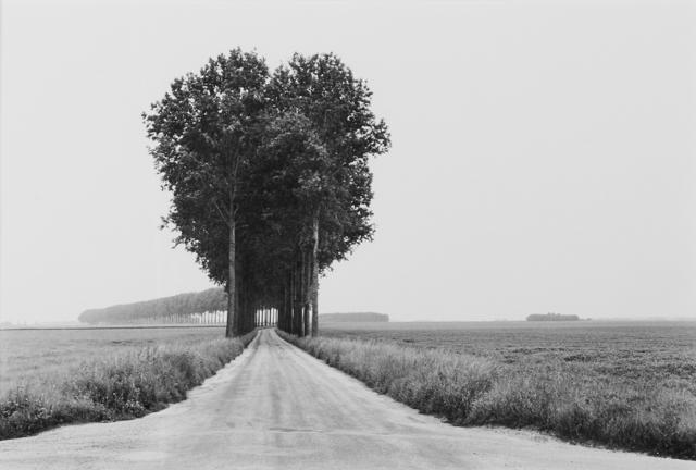 Henri Cartier-Bresson, 'Brie', 1968, Photography, Gelatin silver print (framed, printed ca. 1990), Rago/Wright