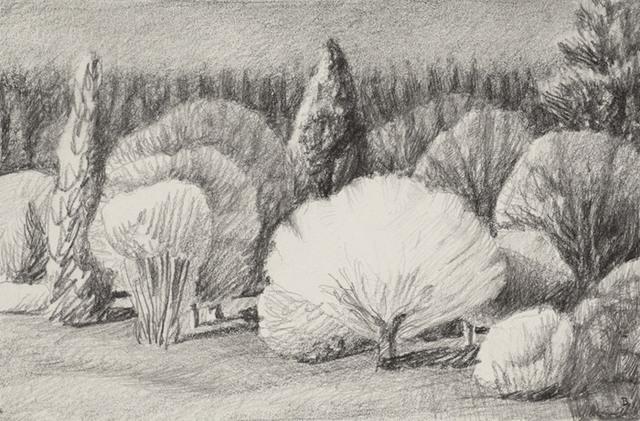 Drew Burnham, 'Lynn Valley Lit-drawing', Bau-Xi Gallery