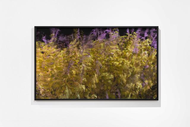 , 'Jardin,' 2018, Piero Atchugarry Gallery