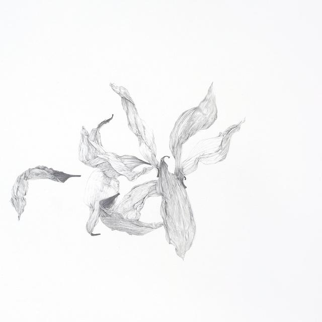 , 'Untitled,' 2015, Artadia