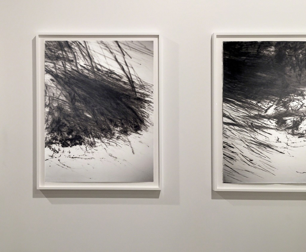 Bruna Stude: Platinum/Palladium Prints