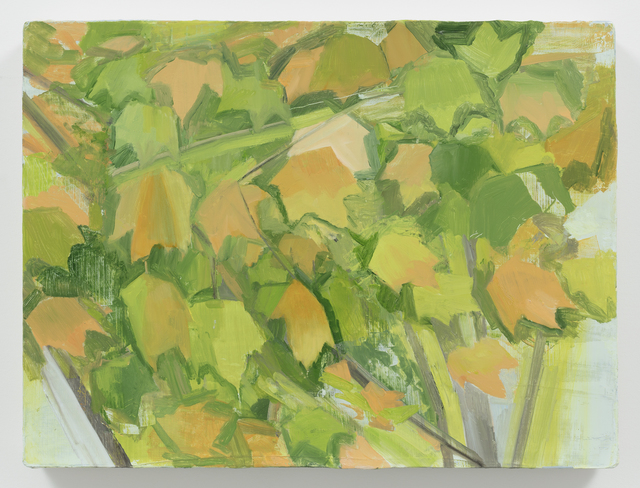 , 'Fall Maple Detail,' 2014, Alexander and Bonin