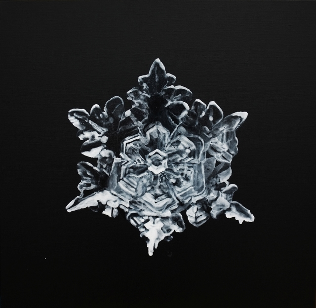 Guo Hongwei 郭鸿蔚, 'The Dark Side – Snowflake No. 3 暗面—雪花3', 2012, Chambers Fine Art