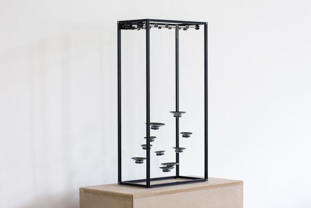 , 'untitled | nº 11 ,' 2019, Standing Pine