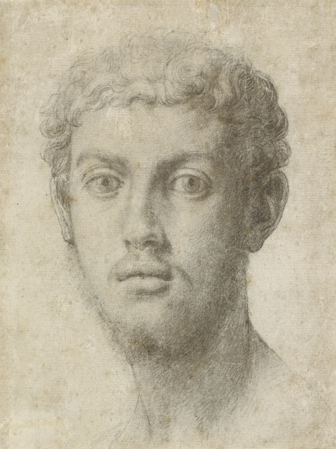Agnolo Bronzino, 'Head of a Man', 1550-1555, J. Paul Getty Museum