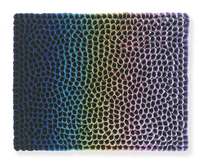 , 'Flowerbed - Rainbow ,' 2017, Nil Gallery