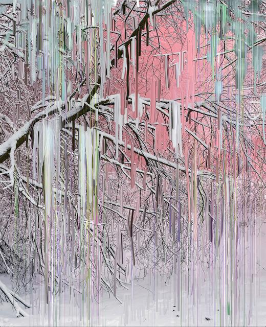 Sandra Kantanen, 'Untitled (Forest 20)', 2019, Bryce Wolkowitz Gallery