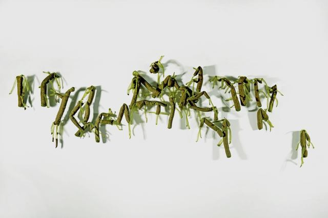 , 'Hydra Magnipapillata...,' 2015, CUC Gallery