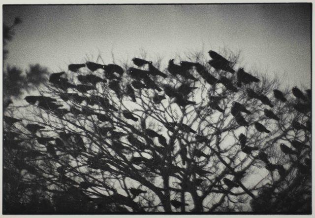 , 'Kanazawa,' 1977, Foam Fotografiemuseum Amsterdam
