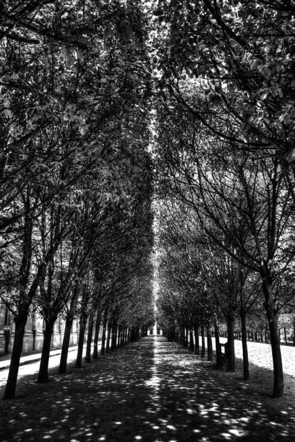 , 'Urbis & Natura _ Palais Royal Light,' 2015, Spaziofarini6