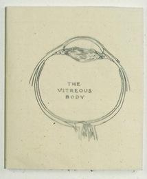 The Vitreous Body