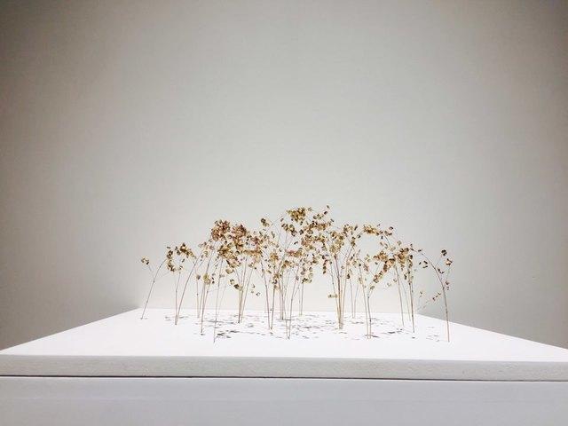 , 'Bogenform (Arch Form),' 2017, Wooson Gallery