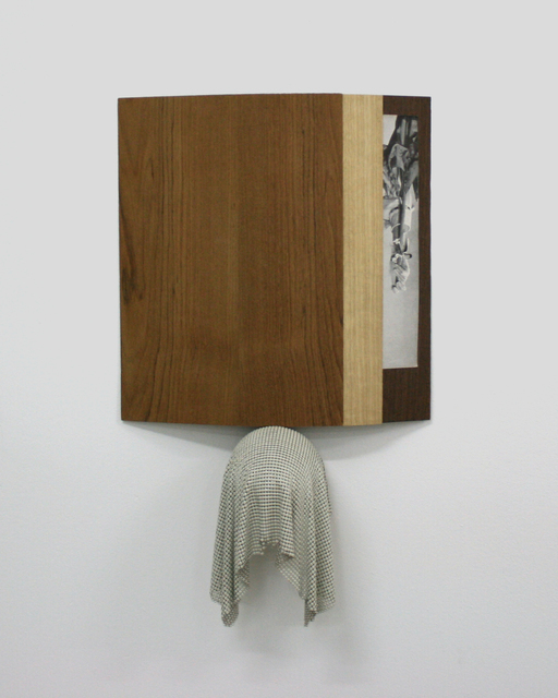 , 'A rather good option,' 2013, Rokeby Gallery