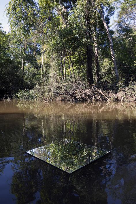 Amazonian Floating Mirror_1