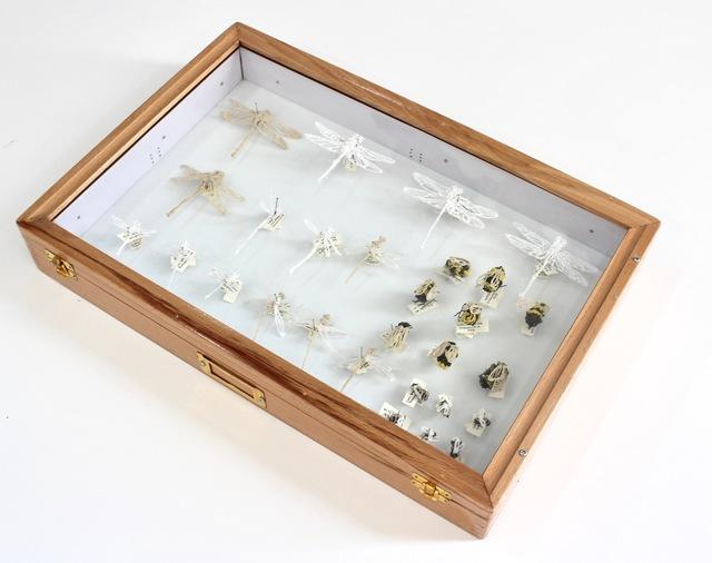 Richelle Gribble, 'Insect Chart - 2', 2018, Jonathan Ferrara Gallery