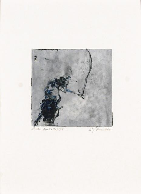 Carol Bernier, 'Étude microscopique 9', 2016, Galerie Simon Blais