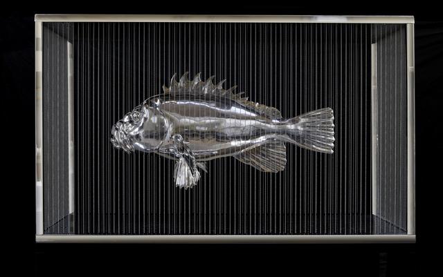 , 'Small grouper fish ,' 2009, Mazel Galerie