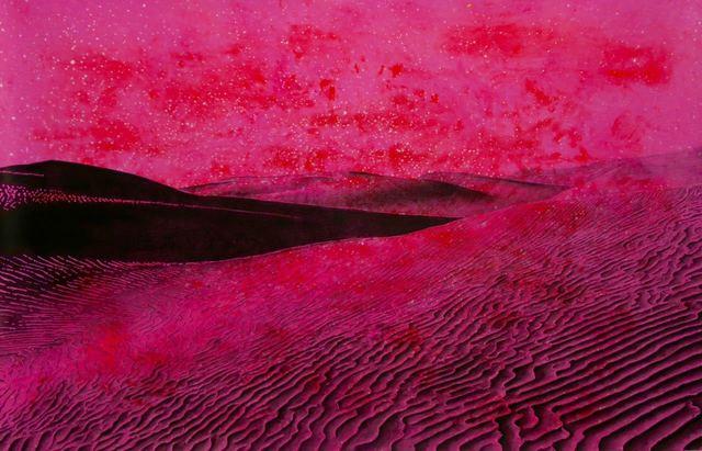 , 'Desert Rose,' 2017, Galeria Lume