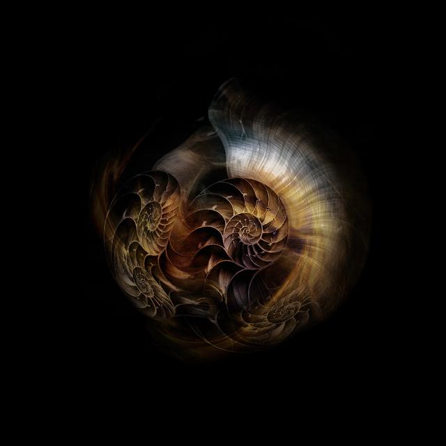 , 'Nautilus Universe 1,' 2018, ARTE GLOBALE