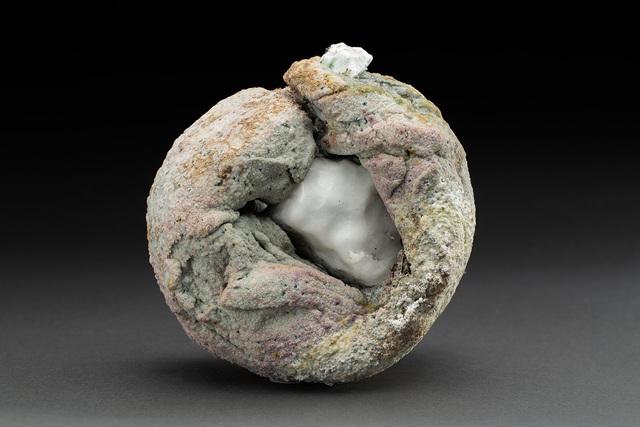 , 'Garden of Earthy Delights,' 2019, Cavin-Morris Gallery