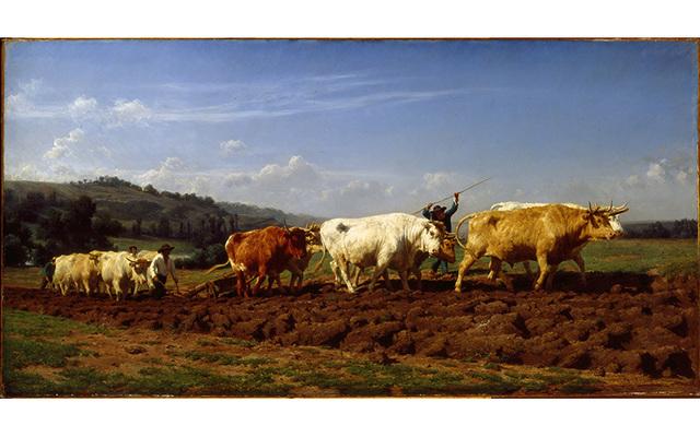 , 'Plowing at Nivernais,' 1850, American Federation of Arts