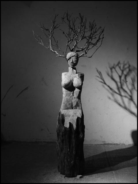 , 'Daphne VIII,' 2017, Bode Gallery